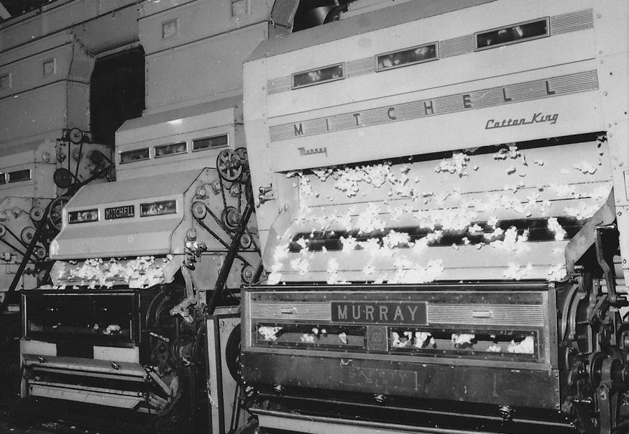 1981 Εκκοκκιστήριο Βάμβακος στη Βέροια