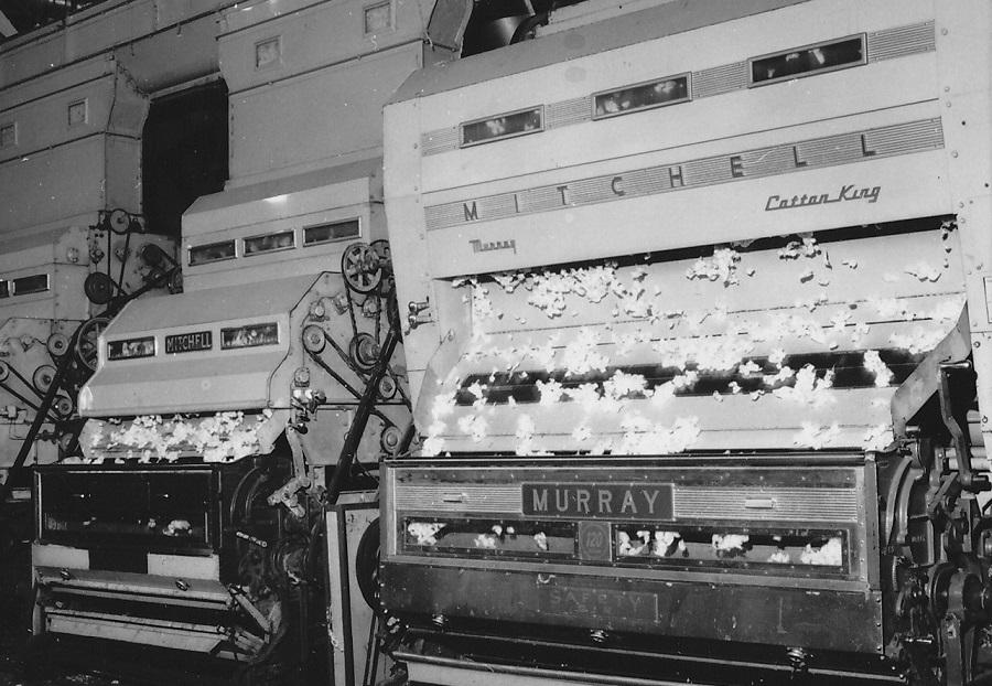 1981 Cotton Ginning Plant Veria