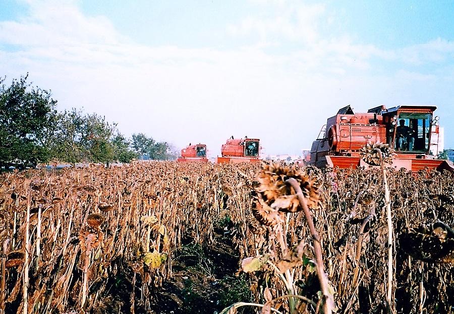 αγροτικές εγκαταστάσεις γνωριμιών γεωργοί που χρονολογούνται από το site