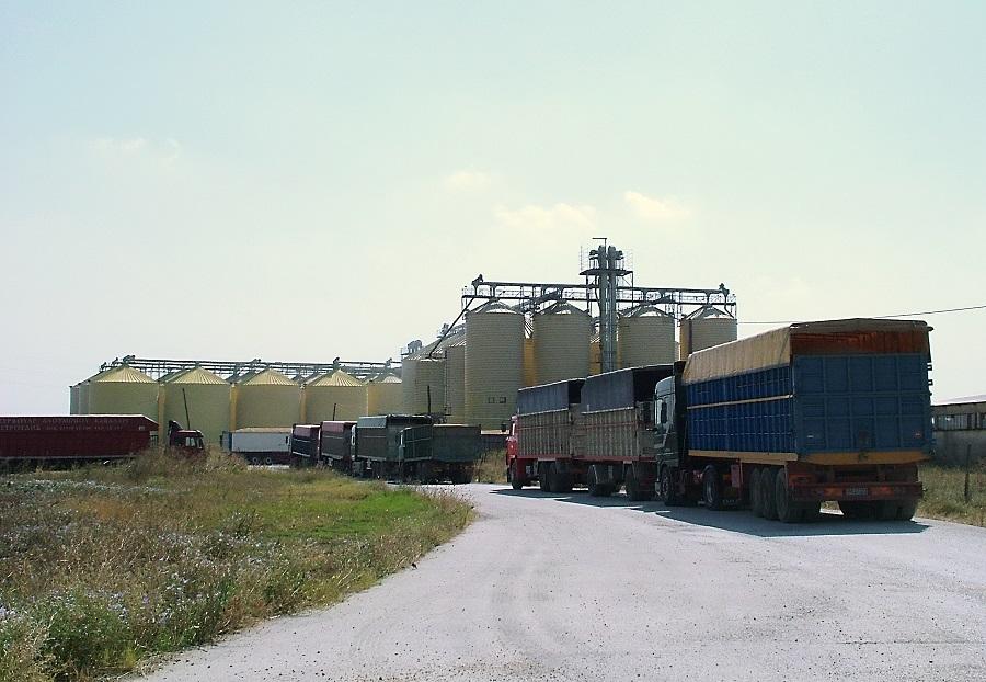 2004 Εισαγωγή στην Παρέμβαση ρυζιού στον Άγ. Αθανάσιο